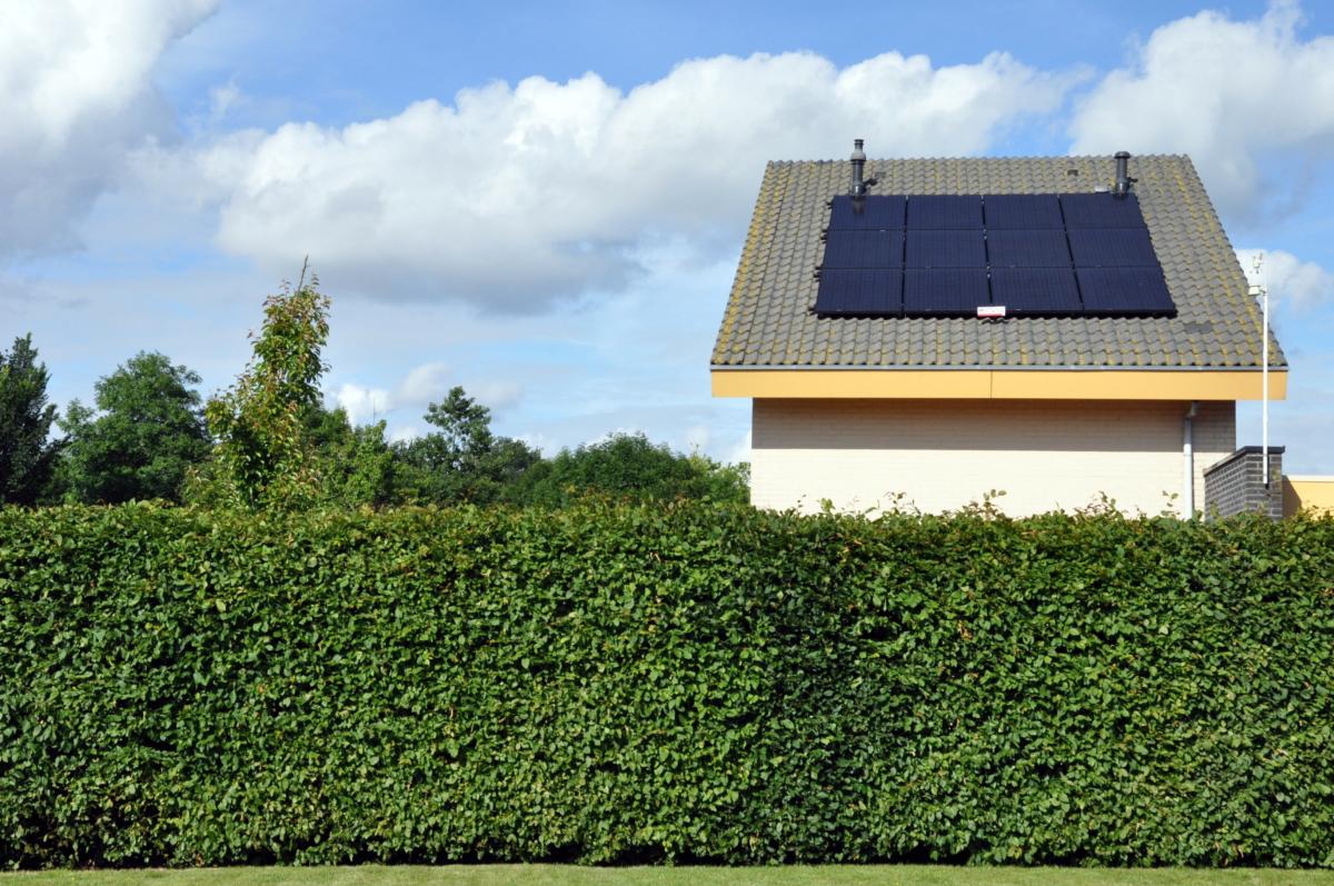 Zonnepanelen op dak van vakantiehuis aan het water in Friesland